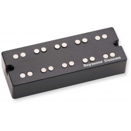 NYC BASS BRIDGE 5 STRG