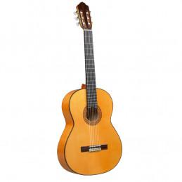 6F Chitarra Flamenca