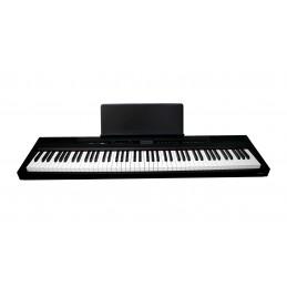 ECHORD SP10 - PIANOFORTE...
