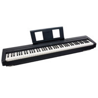Pianoforti Digitali da Palco